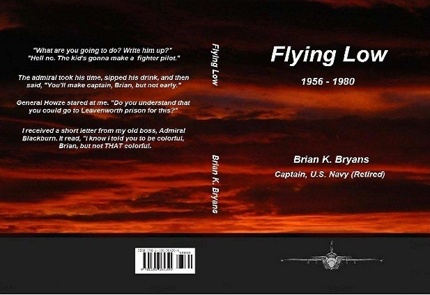 Flying Low by Brian Bryans